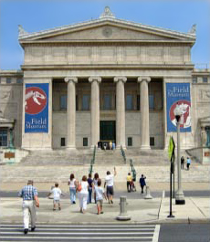 Click for website of Evolving Planet Exhibit at Field Museum